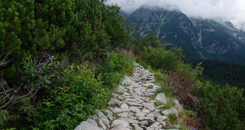 Kamiennym chodnikiem.