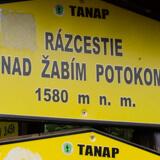 Rozejście nad Żabim Potokiem.