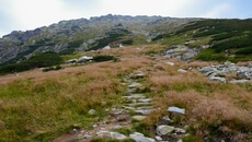 Początek właściwej trasy na Kozi Wierch.