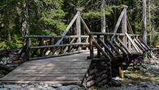 Przechodzimy po kilku drewnianych mostkach.