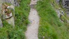 ścieżka na trawersie Wielkiej Buczynowej Turni.