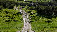 Niebieski szlak na przełęcz Karb.