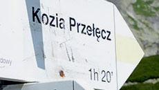 Szlak na Kozią Przełęcz.