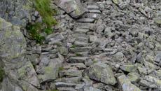 Maszerujemy po wygodnych kamiennych stopniach. Wokół kosodrzewina.