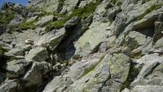 Trzymamy się blisko skał.