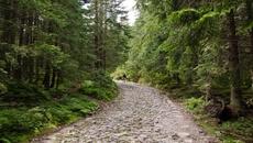 Czarny szlak na Halę Gąsienicową