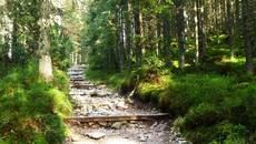 Czerwony szlak na Rówień Waksmundzką.