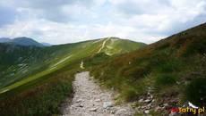 Szlak na Kończysty Wierch.