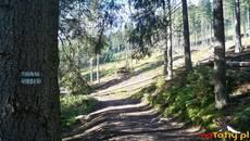 Droga przez dolinę