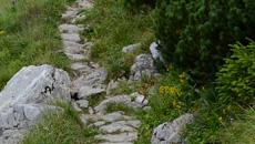 Stromy odcinek po skałach, a nieco póżniej wygodny chodnik z kamieni.