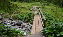 Tutaj zaczyna się szlak na Przełęcz w Grzybowcu.